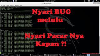 [Image: bug.jpg]
