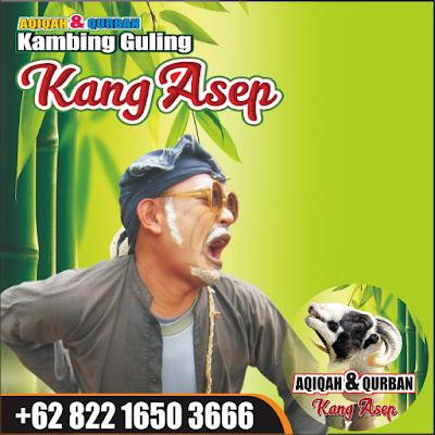 Kambing Guling Kang Asep Lembang,kambing guling lembang,kambing guling,