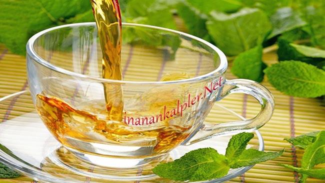 Sağlık İçin Bitkisel Çay İçmek İsteyenlere 5 Seçenek - www.inanankalpler.net
