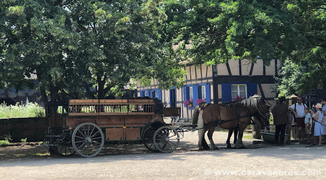 Carro de caballos para recorrer el Ecomuseo de Alsacia | Alsacia y selva negra en autocaravana con niños