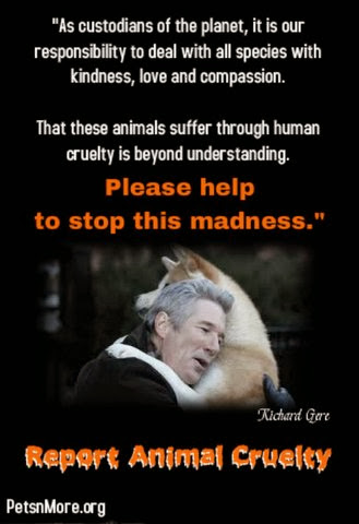 animal, dog, cat, pet, animal, inspiring quotes for animal lovers, petsnmore.org, richard gere