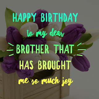 status for brother birthday