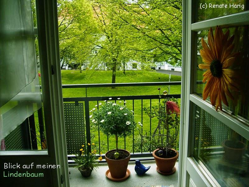 willkommen in renates eckchen hier wohne ich gerne wir schaun auf ein kleines gr nes paradies. Black Bedroom Furniture Sets. Home Design Ideas