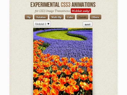 CSS Transition And Animation Effect Tutorials