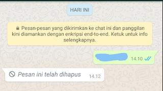 cara melihat pesan dihapus di whatsapp