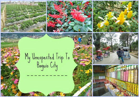 My Unexpected Trip To Baguio City