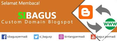 Pengaturan Custom Domain Blogspot Ke TLD
