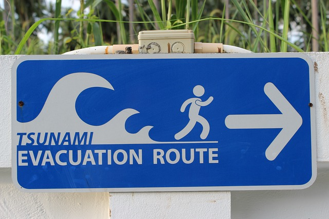 How to Survive Tsunami