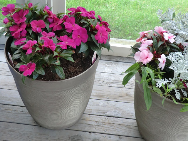 spring planters with pink impatiens for Thunder Bay delivery