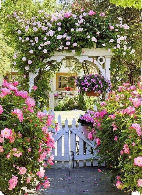 Beautiful House Garden Photo: Moois En Liefs: Tuin