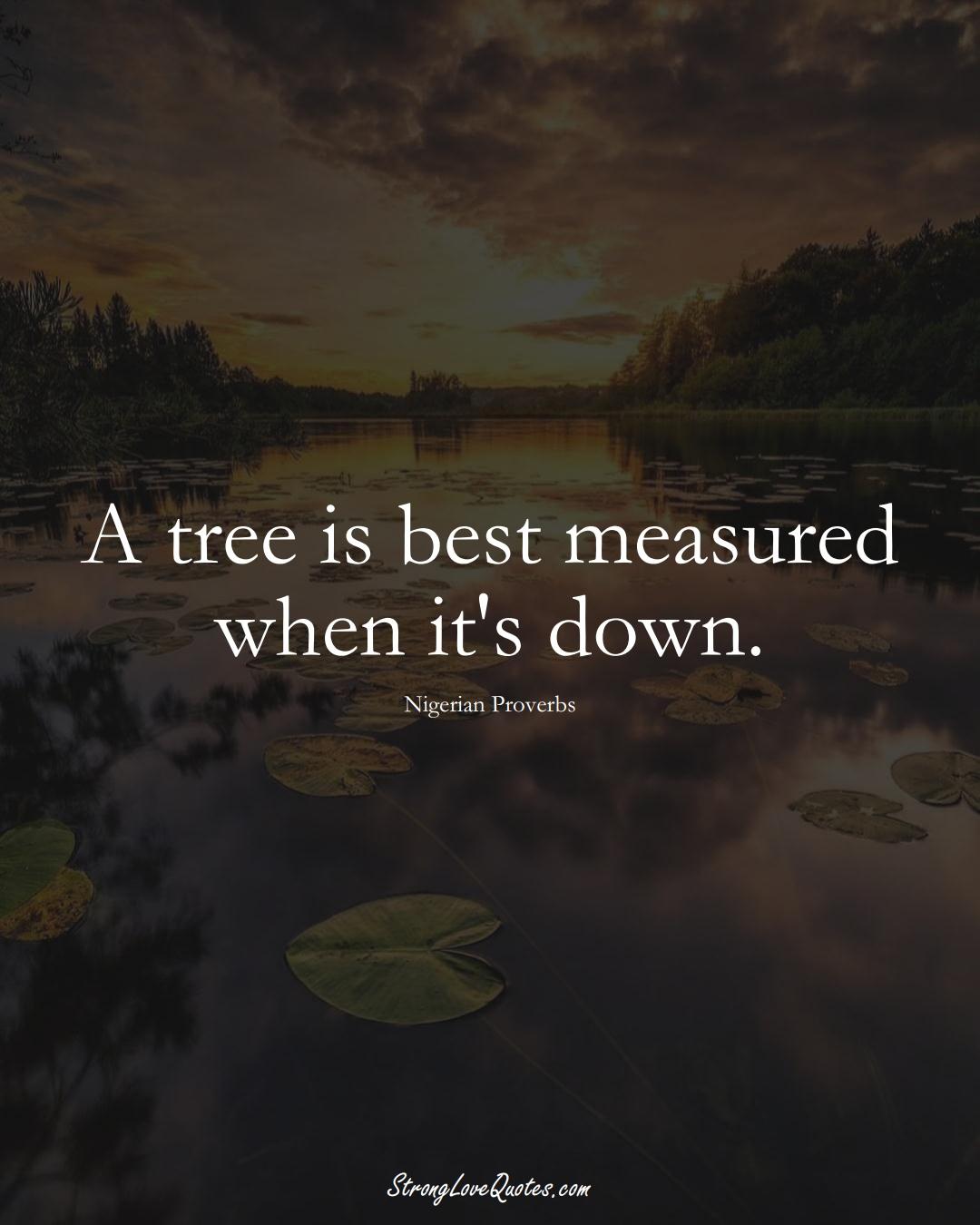 A tree is best measured when it's down. (Nigerian Sayings);  #AfricanSayings