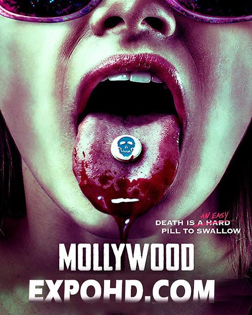 Mollywood 2019 IMDb 480p | WEB-DL 720p | 1080p | Esub 1.2Gbs [Watch & Download]