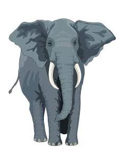 Few lines on Elephant