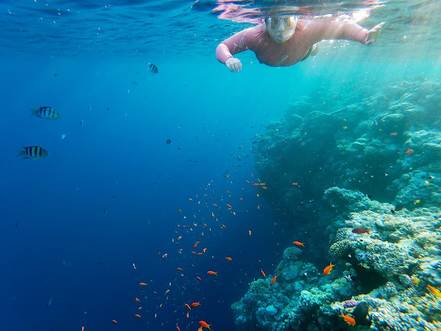 ...and then, we could snorkel! The Blue Hole, Egypt
