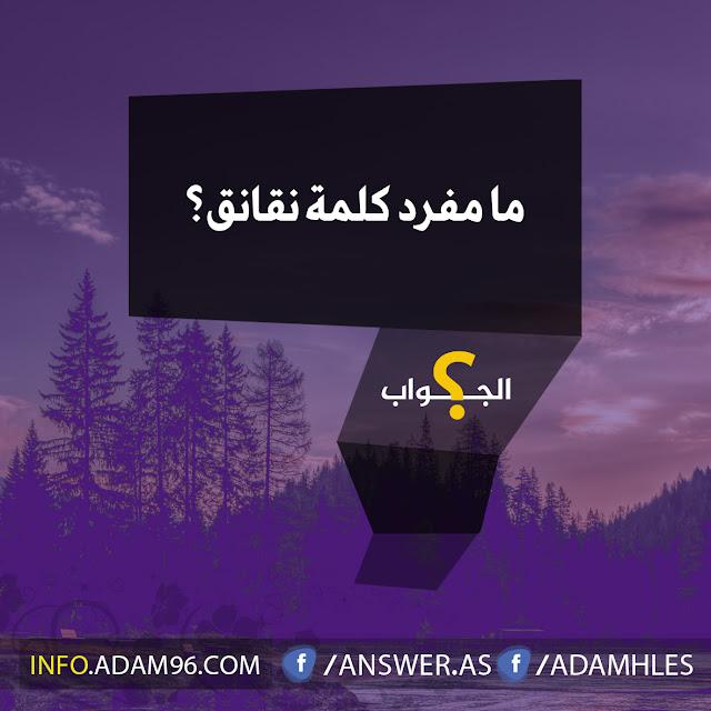 ما مفرد كلمة نقانق سؤال مع جواب - اللغة العربية