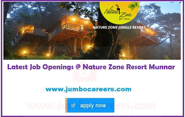 munnar hotel jobs, hotel management jobs in munnar, resort jobs in munnar
