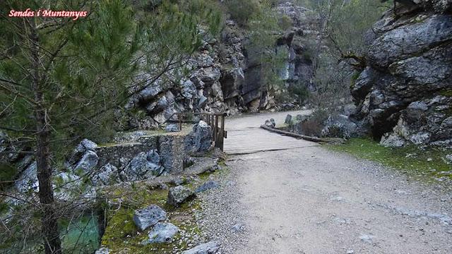 Puente, Nacimiento río Borosa, Pontones, Sierra de Cazorla, Jaén, Andalucía