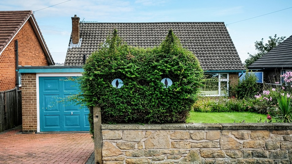 Woman Cuts Her Garden Hedge Into The Shape of a Cat