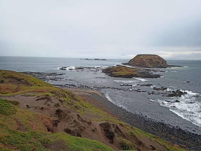 View of the Nobbies Round Island