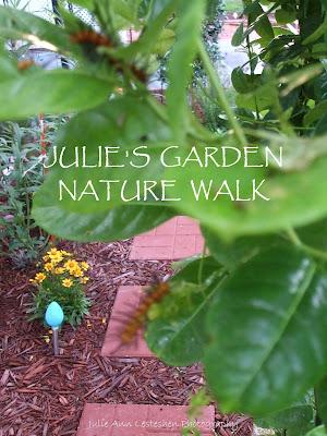 Julie's Garden Nature Walk - Oleander Caterpillar on Yellow Mandevilla