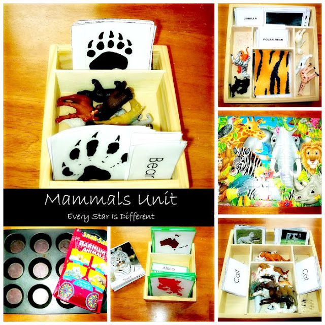 Mammal Activities with Free Printables for Tots and Preschoolers