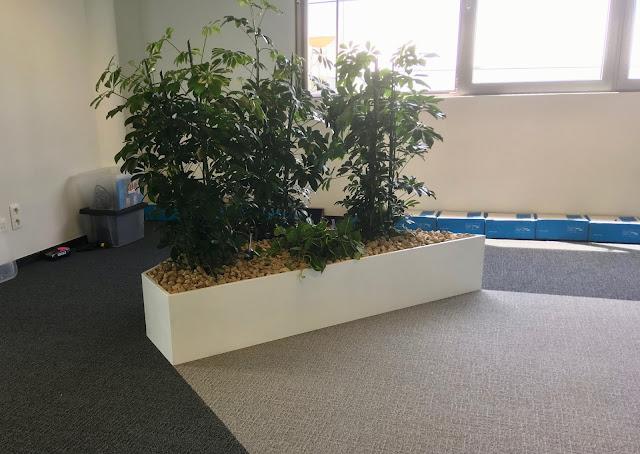 plantenbakken voor kantoor of bedrijf met onderhoudscontract in Brussel Limburg Vlaams-Brabant  Antwerpen
