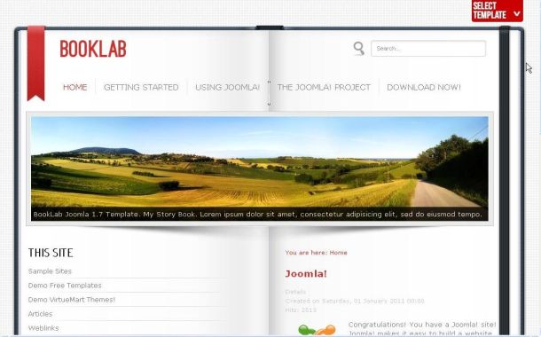 Free Joomla Gray Red Business Theme Template