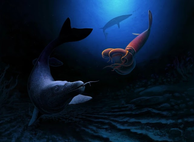 New Mosasaur Species Unearthed in Morocco Shows Diversity of Life Before Asteroid Hit