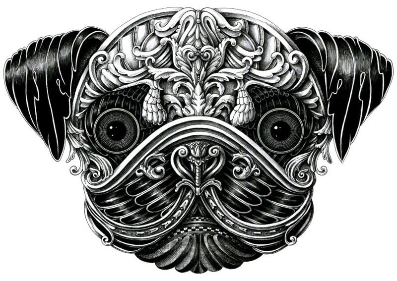 14-Pug-Alex-Konahin-Super-Detailed-Ink-Animal-Drawings-www-designstack-co
