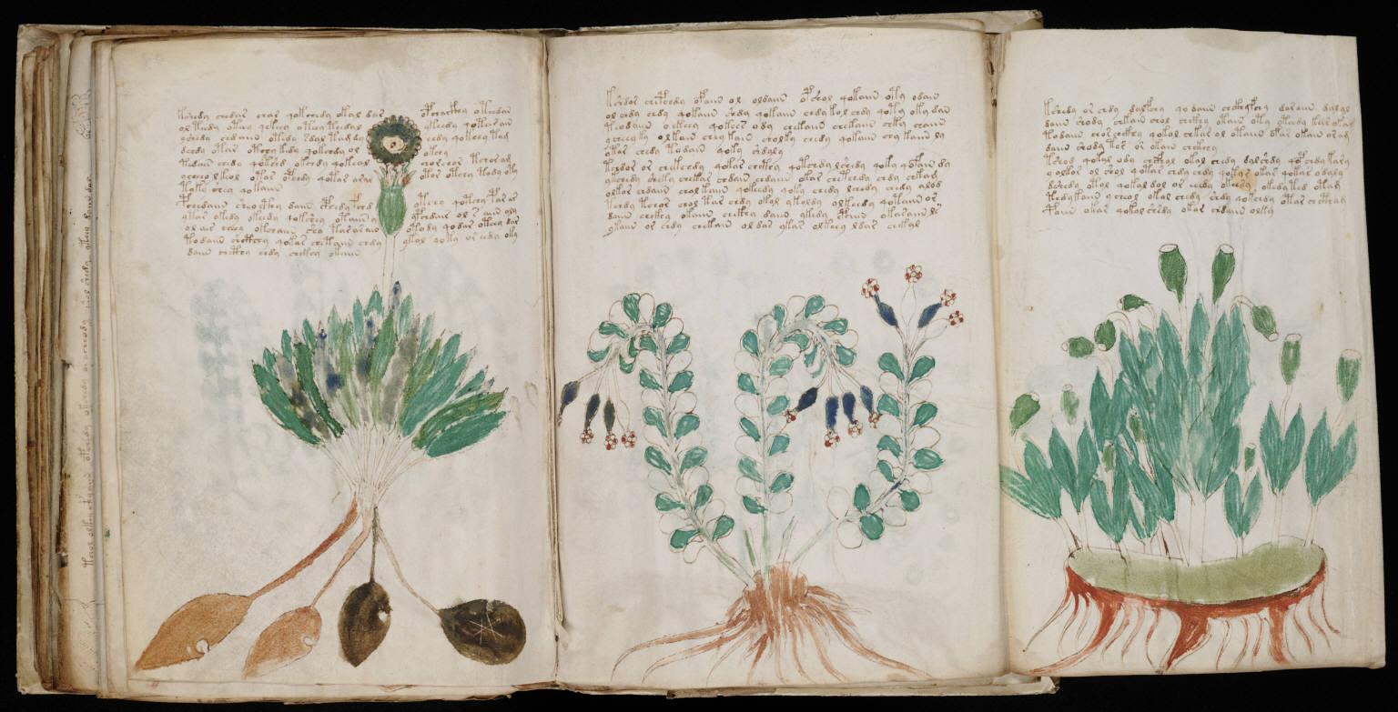 manuscrito168