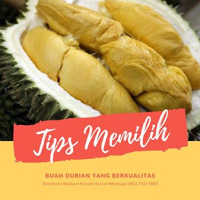 tips memilih buah durian