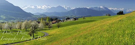 www.dietz.ch - Allmig mit Nidwaldner- und Berner Alpen