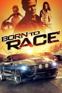 Born to Race 2011 Hindi Dubbed English Telugu Tamil Movie 480p