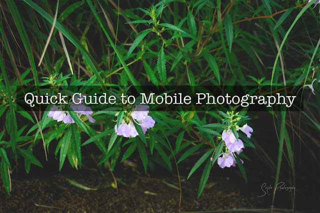 Quick Guide: How to be a good mobile photographer