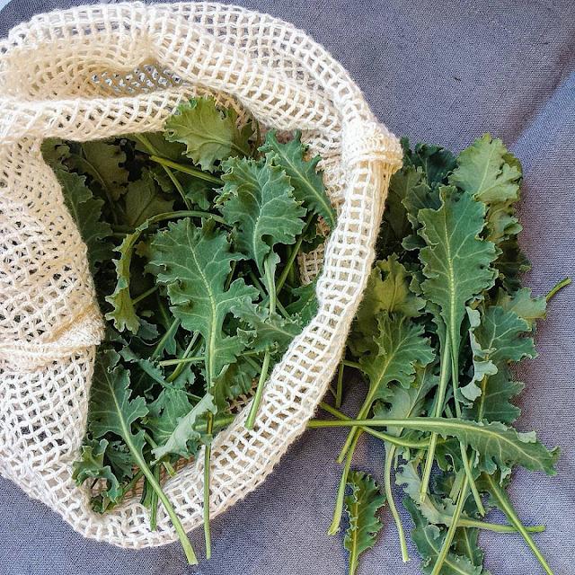 Nettingpose med hjemmedyrka grønnkålblader