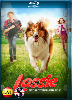 Lassie Vuelve a Casa (2020) REMUX 1080P LATINO/ALEMAN