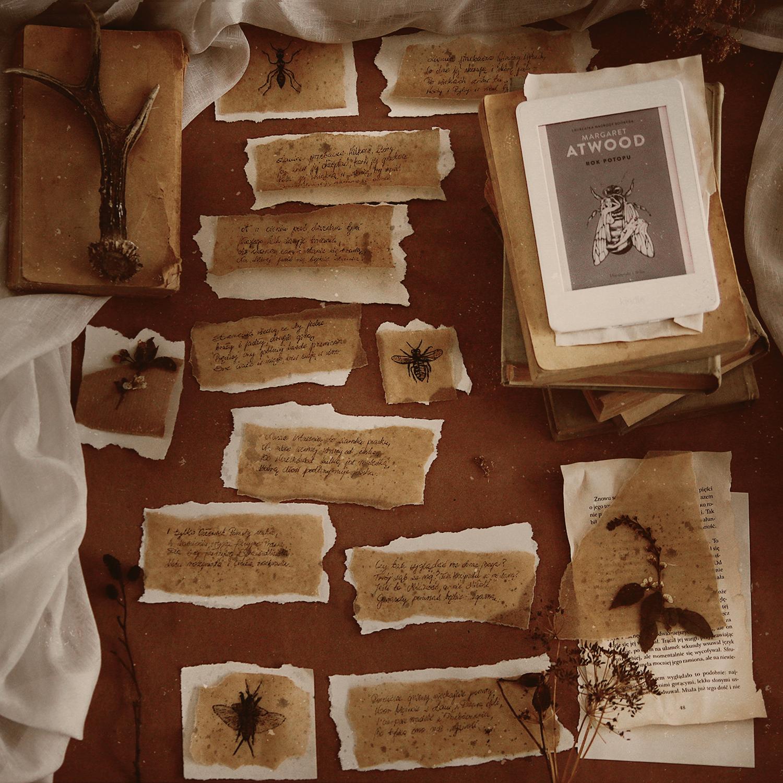 Cytat na dziś - Ziemia przebacza - Rok potopu - Margaret Atwood