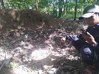 Warga Temuka Susunan Batu Bata Candi Sekitaran Makam Rang Kayo Hitam
