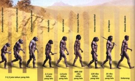 Pengertian Evolusi