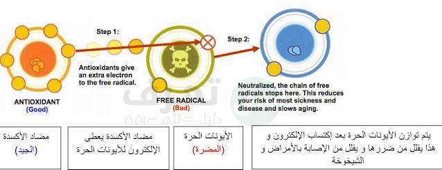 حقائق حول مضادات الأكسدة والوقاية من السرطان