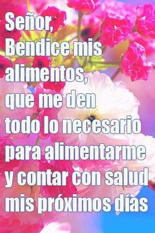 Señor, Bendice mis alimentos, que me den todo lo necesario para alimentarme y contar con salud mis próximos días