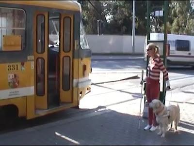Linda a vodící pes Cilka na tramvajové zastávce,