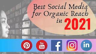 best-social-media-for-organic-reach-2021