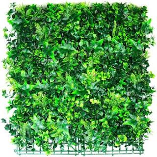 follaje muro verde