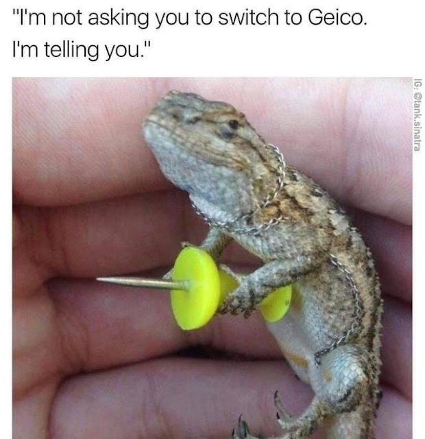 Geico can save you 15% or more on car insurance