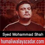 https://www.humaliwalayazadar.com/2015/04/syed-muhammad-shah-nohay-2014-to-2016.html