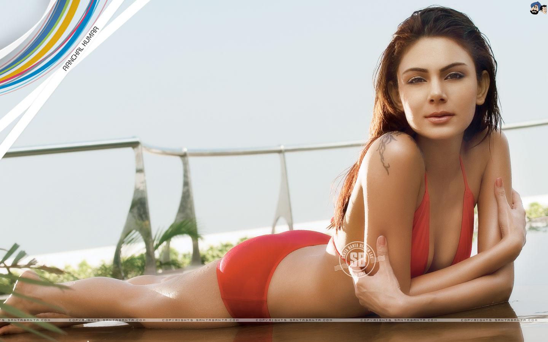 Bollywood Actress Hidden News Aanchal Kumar In Bikini Stills