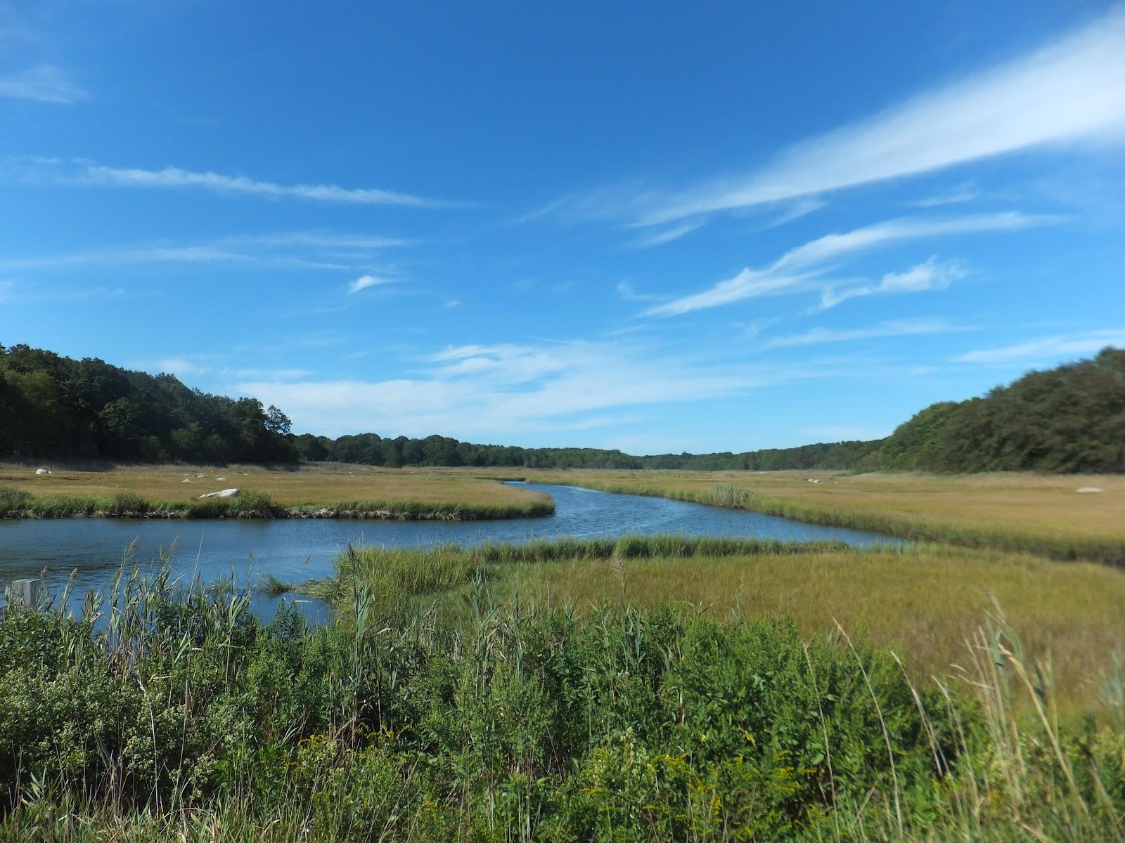 Soul Thoughts: Barn Island Hike