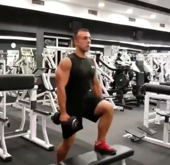 Dumbbell step-up exercise