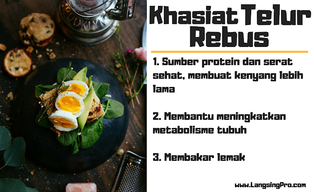 manfaat telur rebus untuk program diet